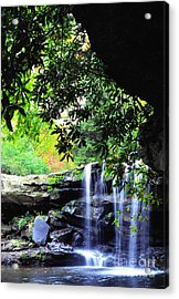Waterfall And Rhododendron Acrylic Print by Thomas R Fletcher