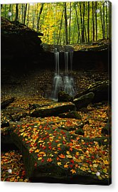 Waterfall In A Forest, Blue Hen Falls Acrylic Print by Panoramic Images