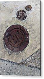 Waterhole Acrylic Print by Ross Odom