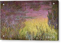 Waterlilies At Sunset Acrylic Print by Claude Monet
