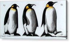 We Three Kings Acrylic Print by Paul Powis
