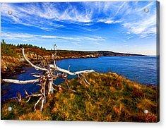 Weathered Coast Acrylic Print by Bill Caldwell -        ABeautifulSky Photography