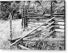 Weathered Fence Acrylic Print by Larry Ricker