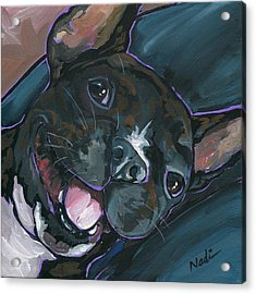 Webster Acrylic Print by Nadi Spencer