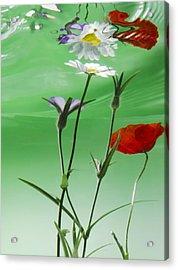 Wet Wild Flower Acrylic Print by Han Van Vonno