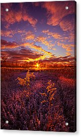 What Forever Means Acrylic Print by Phil Koch