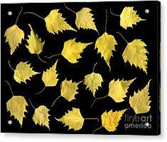 When Leaves Grow Old Acrylic Print by Christian Slanec