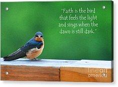 When The Dawn Is Still Dark Acrylic Print by Diane E Berry