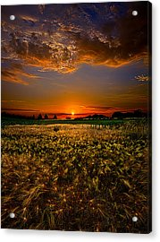 When Time Stood Still Acrylic Print by Phil Koch