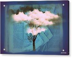 Where Dreams Are Born Acrylic Print by Paulo Zerbato