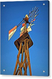 Which Way The Wind Blows Acrylic Print by Glenn McCarthy Art and Photography