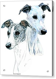 Whippet Pair Acrylic Print by Kathleen Sepulveda
