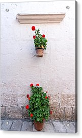 White Colonial Wall And Flowers Acrylic Print by Jess Kraft