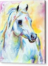 White Horse Portrait Acrylic Print by Christy  Freeman
