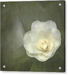 White In The Corner Acrylic Print by Rebecca Cozart
