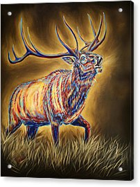 White Pine Sanctuary Bull Acrylic Print by Teshia Art