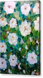 White Rose Bush Acrylic Print by Patricia Taylor