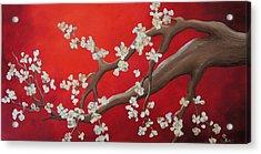 White Tree Blossoms Acrylic Print by Shiela Gosselin