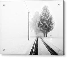 White Tree Gate Acrylic Print by Franz Bogner