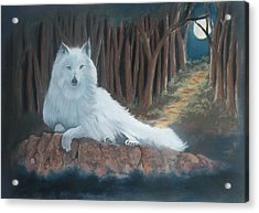 White Wolf Acrylic Print by Charles Hubbard