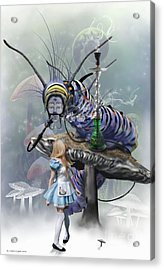 Who Are You  Acrylic Print by Crispin  Delgado