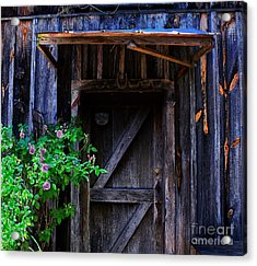 Who Is Living Here Acrylic Print by Barbara Teller