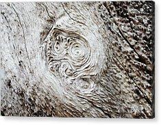 Whorly Wood Acrylic Print by Lynda Dawson-Youngclaus