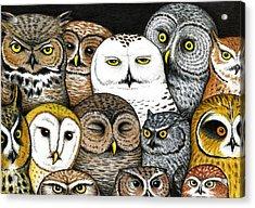 Who's Hoo Acrylic Print by Don McMahon