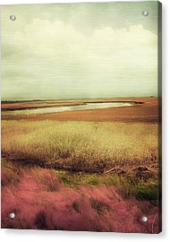 Wide Open Spaces Acrylic Print by Amy Tyler