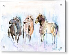 Wild And Free Acrylic Print by Arline Wagner