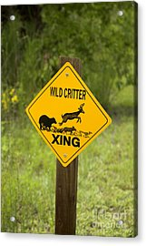 Wild Critter Crossing Sign Acrylic Print by Inga Spence