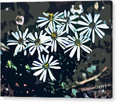 Wild Daisy Art  Acrylic Print by Juls Adams