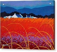 Wild Flowers County Wicklow Acrylic Print by John  Nolan