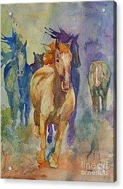 Wild Horses Acrylic Print by Gretchen Bjornson