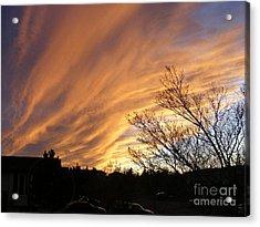 Wild Sky Of Autumn Acrylic Print by Barbara Griffin