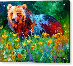 Wildflower Grizz II Acrylic Print by Marion Rose