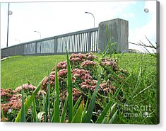 Wildflowers Beside The Bridge Acrylic Print by Marsha Heiken