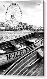 Wildwood Black Acrylic Print by John Rizzuto