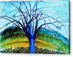 Wiliwili Acrylic Print by Kevin Smith