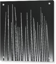 Wind Organ Acrylic Print by Wim Lanclus