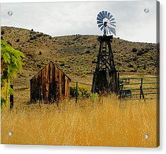 Windmill 2 Acrylic Print by Marty Koch