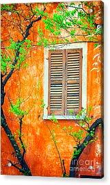 Window And Tree Acrylic Print by Silvia Ganora