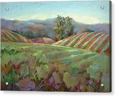 Wine Country Acrylic Print by Joan  Jones
