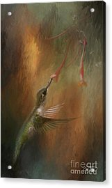 Wings Of An Angel Acrylic Print by Cris Hayes