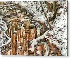 Winter - Natures Harmony Painted Acrylic Print by Mike Savad