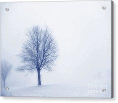 Winter Blues Acrylic Print by Randy Steele