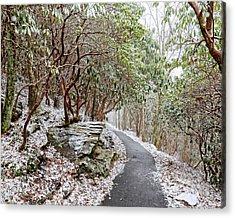 Winter Hiking Trail Acrylic Print by Susan Leggett