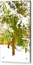 Winter In  Catskills Acrylic Print by Lanjee Chee