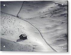 Winter Light Acrylic Print by Mihail Dulu