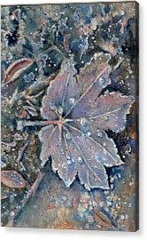 Winter Morn Acrylic Print by KC Winters